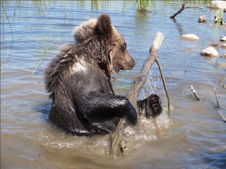 медвежьегорск рыбалка март